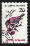 Stamps Romania -  Aves 1993-1996