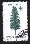 Sellos del Mundo : Europa : Rumania : Árboles, Abeto de plata europeo (Abies alba)