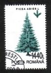 Sellos de Europa - Rumania -  Árboles, Abeto común (Picea abies)