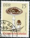 Sellos de Europa - Alemania -  Seta