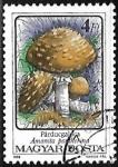 Stamps  -  -  Jose Roberto Lara 2021