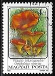 sello : Europa : Hungría : Setas - Omphalotus olearius