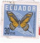 Sellos del Mundo : America : Ecuador : Papilio Torquados Leptalea