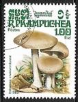 Stamps : Asia : Cambodia :  Setas - Hebelona crustuliniforme