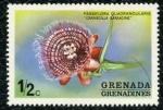 Sellos de America - Granada -  Flor
