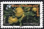 de Europa - Francia -  manzana reineta gris