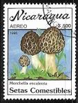 Sellos del Mundo : America : Nicaragua : Setas - Morchella esculenta