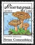 Sellos del Mundo : America : Nicaragua : Setas - Lactarius deliciosus