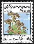 Sellos del Mundo : America : Nicaragua :  Setas - Craterellus cornucopioides