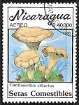 Sellos del Mundo : America : Nicaragua :  Setas - Cantharellus cibarius