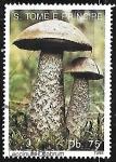 Sellos del Mundo : Africa : Santo_Tomé_y_Principe : Setas - Leccinum ocabrum