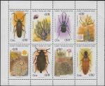 de America - Chile -  Insectos y cactáceas