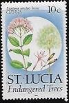 Stamps : America : Saint_Lucia :  Árboles en peligro de extinción