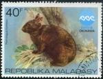 Sellos de Africa - Madagascar -  Conejo
