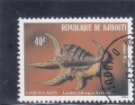 Stamps Djibouti -  caracola- coquillages