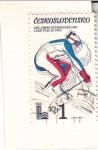 Stamps : Europe : Czechoslovakia :  OLIMPIADA DE INVIERNO LAKE PLACID