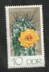 Sellos del Mundo : Europa : Alemania :  1603 - Cactus, Lobivia haageana
