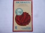 de America - Nicaragua -  Independencia Norteamericana (1776-1976)- Moneda Colonial.