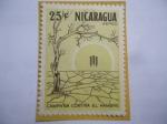 de America - Nicaragua -  Campaña contra el hambre