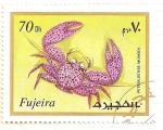 Sellos del Mundo : Asia : Emiratos_Árabes_Unidos : Fujeira. Criaturas marinas. Petrolisthes Monodi.