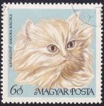 Stamps : Europe : Hungary :  gato persa color crema