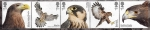Stamps : Europe : United_Kingdom :  serie- Rapaces