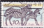 Stamps Czechoslovakia -  CEBRAS