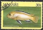 Sellos del Mundo : Africa : Malawi : peces