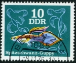 Stamps : Europe : Germany :  Pez Guppy