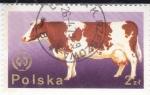 Stamps Poland -  vaca