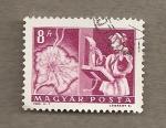 Stamps Hungary -  Mapa de Budapest y automatización teléfonos