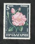 Sellos del Mundo : Europa : Bulgaria :  2929 - Rosa