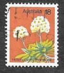 Sellos de Oceania - Australia -  564 - Flor de Papel