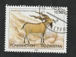 Stamps Tajikistan -  14 - Capra falconeri heptneri