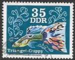 Stamps Germany -  fauna