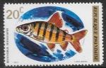 Sellos del Mundo : Africa : Rwanda : peces