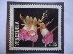 de America - Venezuela -  Orquídeas - Galeandra  minax