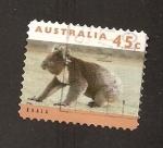 de Oceania - Australia -  INTERCAMBIO