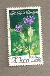 Stamps Germany -  Protección de plantas:Pulsatilla vulgaris