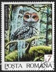 sello : Europa : Rumania : Strix occidentalis