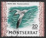 Sellos de Europa - Reino Unido -  aves