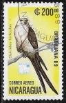 sello : America : Nicaragua : Elanoides forficatus