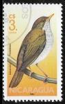 Stamps : America : Nicaragua :  Catharus aurantiirostris