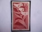 Sellos de Europa - España -  Ed:ES-GN 356 - Guinea Española - Flores: Digitalis Purpures - Sellos: Pro-Indigenas 1956.