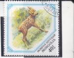 Stamps Mongolia -  cervatillo