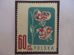 Stamps Oceania - Pitcairn Islands -  Gorro de Turk - Lirio de Mortagón (Lilum martagón) - Serie: Flores Protegidas.
