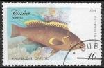 Stamps : America : Cuba :  Peces - Epinephelus flavolimbatus