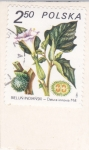 Stamps Poland -  FLORES