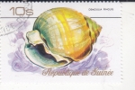 Stamps Guinea -  Caracola