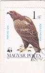 Stamps Hungary -   Águila Imperial Oriental (Aquila heliaca)